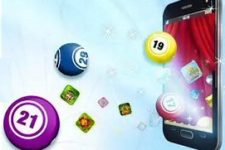 How to Play Bingo Online and Win Money
