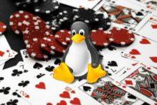 How to Play Casino Games on Ubuntu