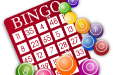 Single vs Multi-Player Bingo Games Online