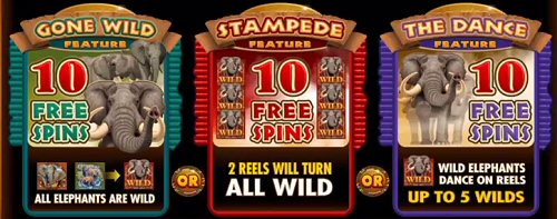 King Tusk Slot Free Spins Features