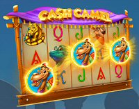 Cash Camel Free Spins
