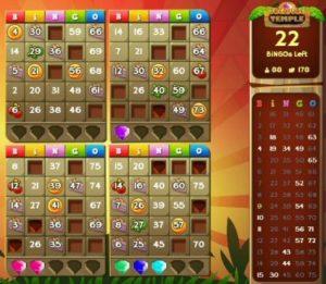 Single Player Online Bingo Games