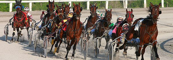 Kwartha Downs Ponders Questionable Future of Horse Racing in Ontario
