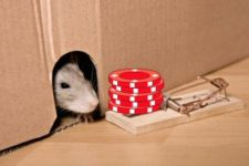 How does Casino Chip Rat-Holing work, and Will it Help Me Win More?